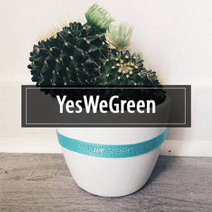 YesWeGreen ou comment consommer local
