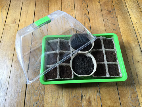 Mini-serre semis