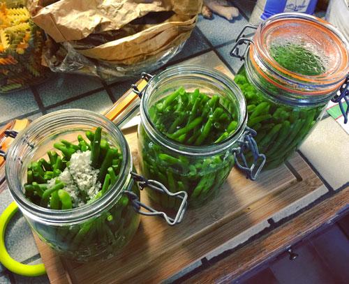 Réaliser ses conserves de haricots verts
