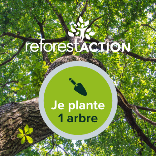 Planter un arbre avec ReforestAction