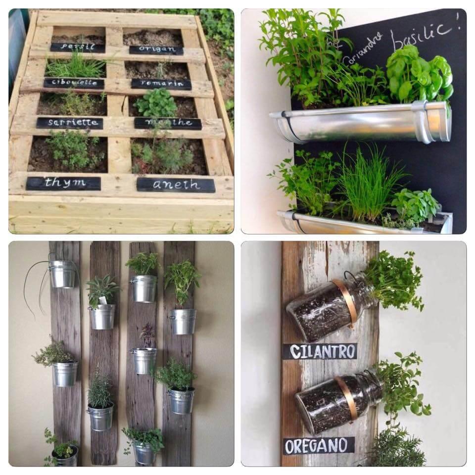 Faire un jardin aromatique avec de la récup