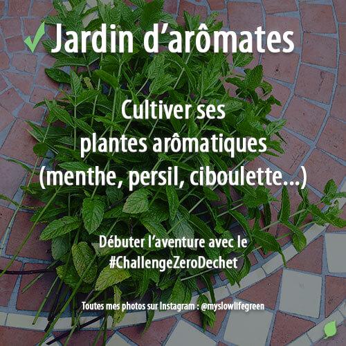 Cultiver un jardin aromatique